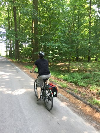 Bike Møn and ride along idyllic forest trails