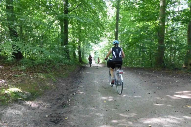 Family cycling holidays on island of Møn. Ride along forest trails.