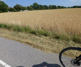 Biking the peaceful countryside on island of Møn Denmark