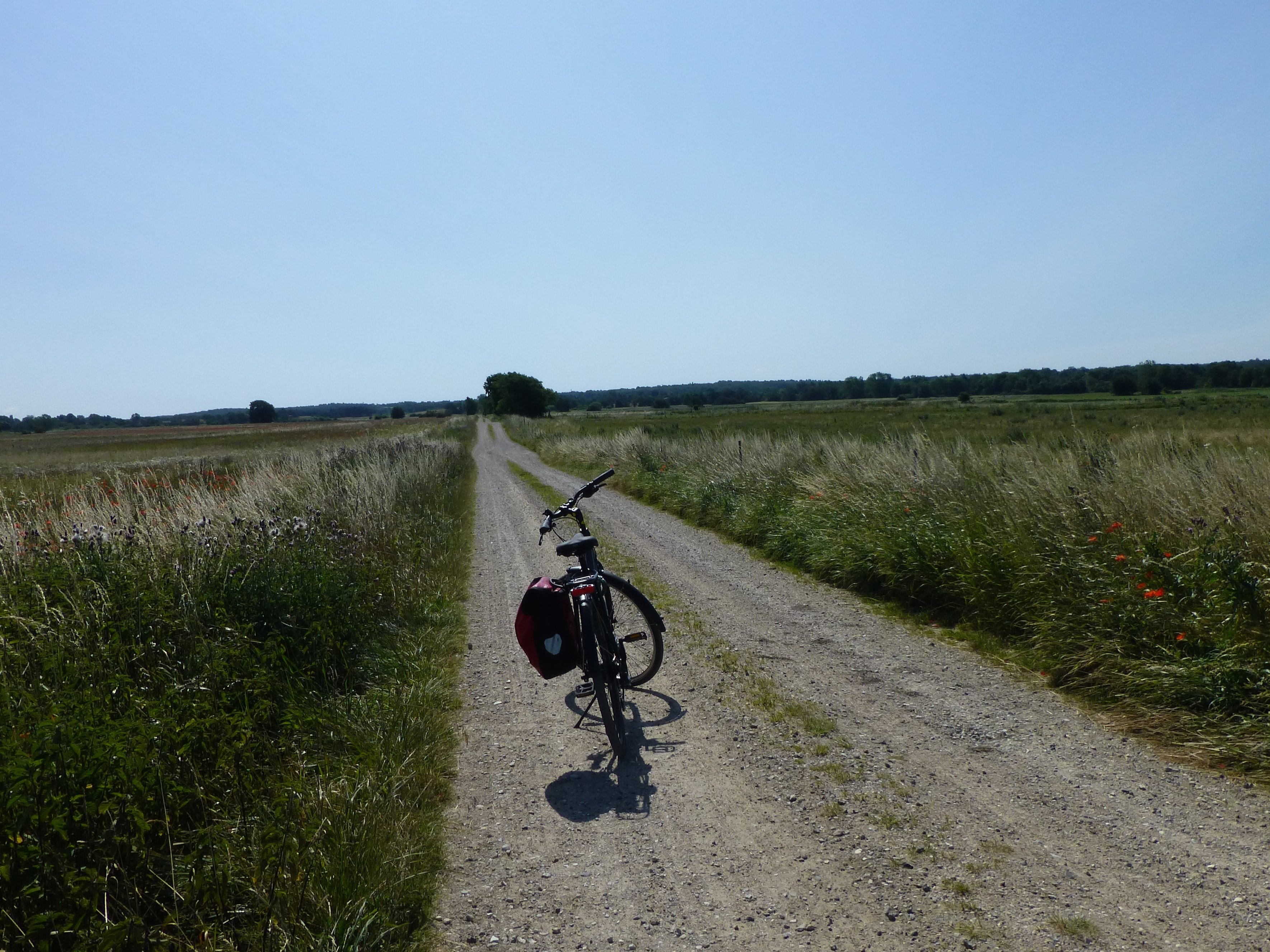 Explore Danish countryside on your bike tour in Denmark