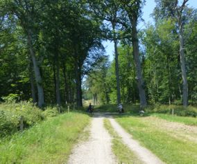 cycling holiday Kings trail Denmark
