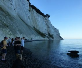 Viewing seals at Møns Klint